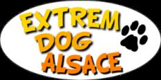 extrem dog alsace.png