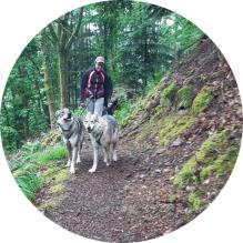 randonnée canirando chien